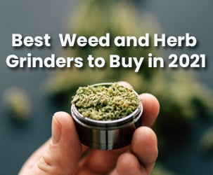 Top 10 Best Weed and Herb Grinders to Buy in 2021