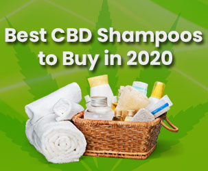 Best CBD Shampoos to Buy in 2021