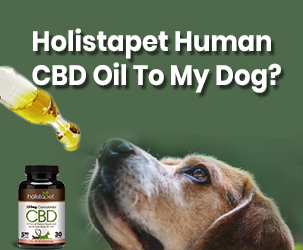 Can I Give Holistapet Human CBD Oil To My Dog?