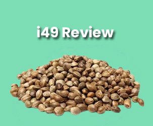I49 Seed Bank Review | The Best and High-Quality Marijuna Seeds