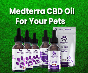 Medterra CBD Oil For Your Dogs & Cats