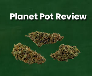 Planet Pot Review | The Best Platform for CBD Products