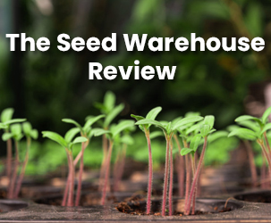 The Seed Warehouse Review I Fabulous Place for Seeds