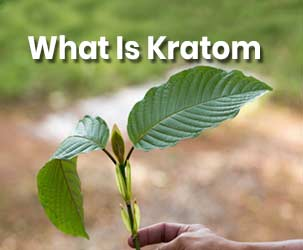 What is Kratom and What are Its Benefits?