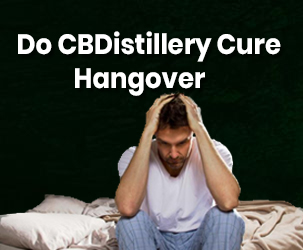 Do CBDistillery Products Cure Hangover?