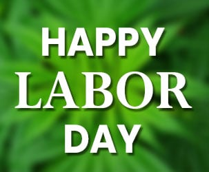 Labor Day CBD Oil Sales and Coupons 2019