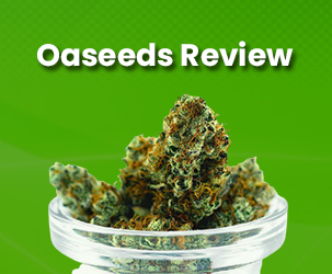 Oaseeds Review   Best Place to Buy Feminised and Auto Cannabis Seeds