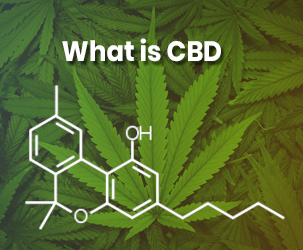 CBD Oil: What is it and Why You Should Try It?