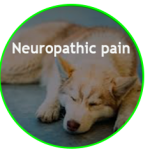 Reduce Neuropathic Pain